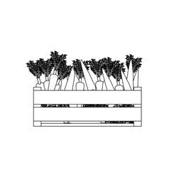 Black silhouette of wooden box with carrots vector