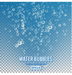Bubbles in water on transparent background glossy vector