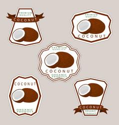 The theme coconut vector