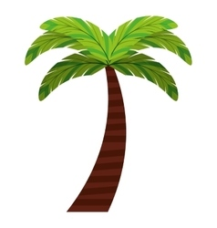 Leafs natural palm tropical icon vector