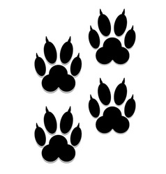 Paw Prints vector image