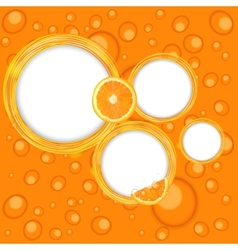 Abstract frame with orange vector image vector image