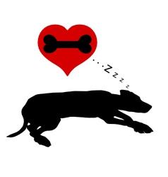 Dog dreams of bones vector image vector image