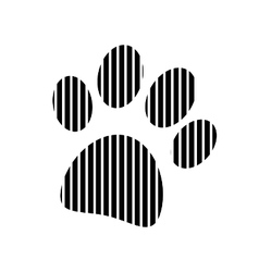 Paw sign on white vector image vector image