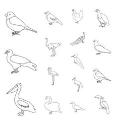Types of birds outline icons in set collection for vector