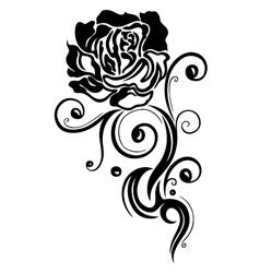 Rose flower love vector image