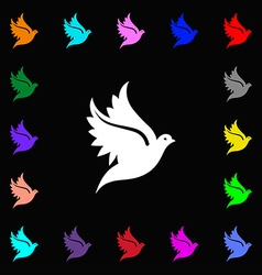 Dove icon sign lots of colorful symbols for your vector