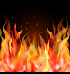 isolated realistic orange and red fire flame on vector image vector image
