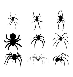set of black silhouette spider icon isolated on vector image vector image