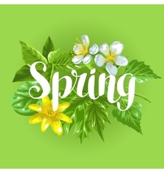 Spring green leaves and flowers Card with plants vector image vector image