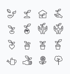 Plant and sprout growing icons flat line vector