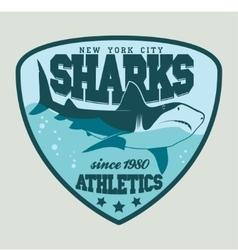 Shark sport emblem vector image