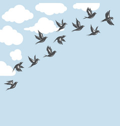 background with flock of birds vector image