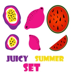 exotic fruits set vector image vector image