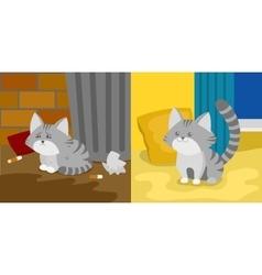 Homeless and domestic kitten vector