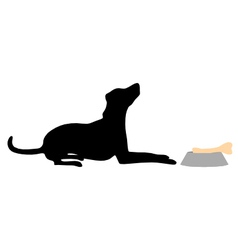 Dog feeding vector
