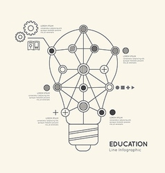 Flat linear infographic education outline lightbul vector