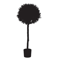 House and office plant tree silhouette vector