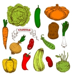 Engraving sketches of healthful organic vegetables vector