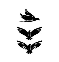 Bird silhouette on white background vector