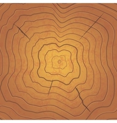 Bright tree rings square realistic vector