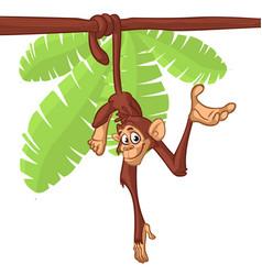 cartoon cute monkey chimpanzee hanging vector image