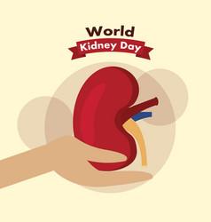 Hand holding kidney day awareness health vector