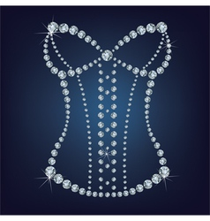 Ladys sexy corset made from diamonds vector image