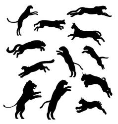 Setofjumpingcats vector