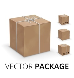 Wraped box vector image vector image
