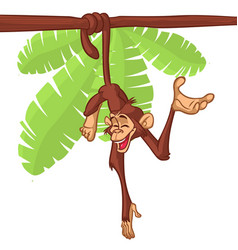 cartoon cute monkey chimpanzee hanging vector image
