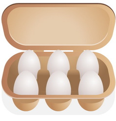 eggs in box vector image vector image