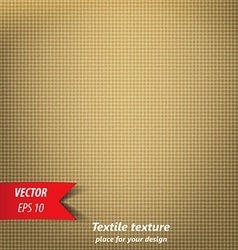 textile texture 5 vector image vector image