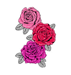 Trio of tattoo style roses in pink red and purple vector
