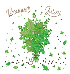 Bouquet garni vector