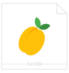 Flat icon of peach apricot digital object of vector