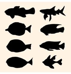Fish set icons vector