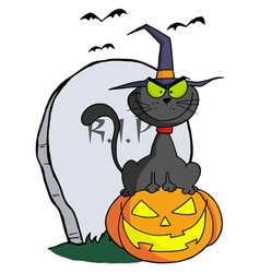 Halloween cat on pumpkin near tombstone vector