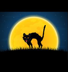 halloween growl black cat moon graveyard vector image