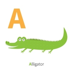 Letter a alligator zoo alphabet english abc with vector