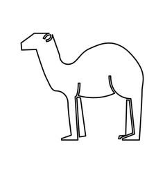Manger camel figure silhouette icon vector