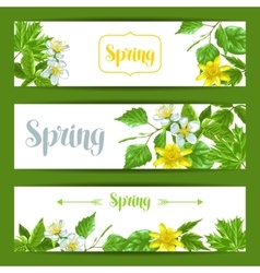Spring green leaves and flowers banners with vector