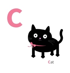 Letter c cat zoo alphabet english abc with vector