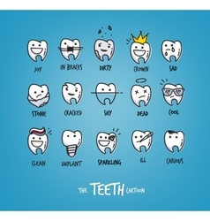 Teeth happy characters vector image