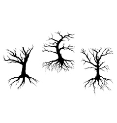 Dead trees with stem and roots vector