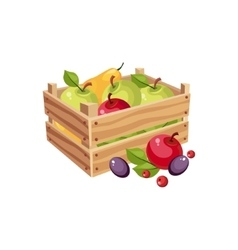 Wodden crate full of garden fruits farm and vector