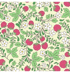 raspberry and green leaves vector image