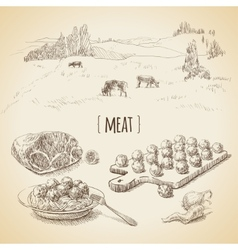 Meat sketch vector