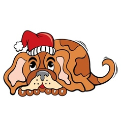 Dog in Christmas time vector image vector image