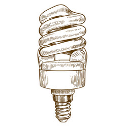 engraving of lightbulb vector image vector image